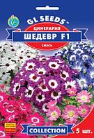 Семена Цинерария Шедевр F1 5шт Collection