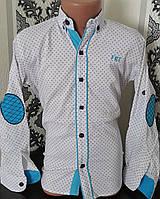 Стильная стрейчевая рубашка для мальчика 6-14 лет (белая 1701) (пр. Турция)