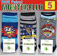 """Детские демисезонные носки ароматизированные """"Montebello"""" PAW Patrol 100% бамбук Турция  """"размер: 5"""" НДД-317"""