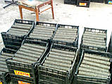 Изготовление брикетов из опилок, фото 5