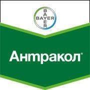 Фунгицид Антракол 70WP з.п. (15кг.) BayerCropScience AG