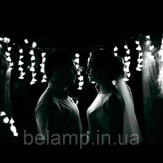 свадебная фото сессия и светодиодная штора