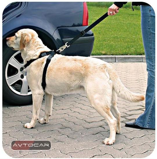 Автомобильный ремень безопасности Trixie ✓ размер: XL ✓ для собак 80-100 см.