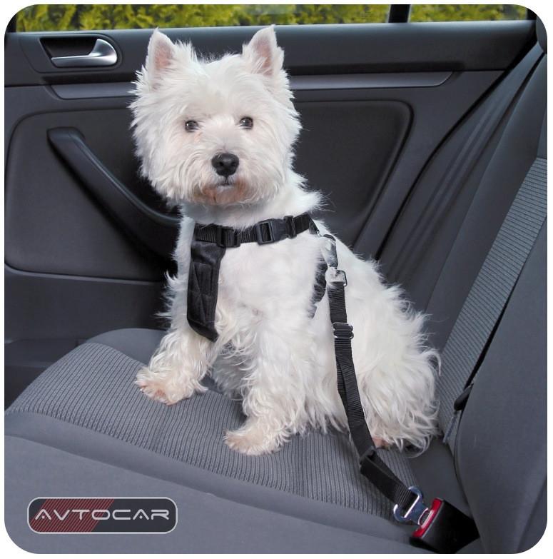 Автомобильный ремень безопасности Trixie ✓ размер: M ✓ для собак 50-70 см.