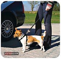 Автомобильный ремень безопасности Trixie ✓ размер: L ✓ для собак 70-90 см.