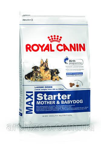 Royal Canin Maxi Starter 18 кг Роял Канин для щенков средних пород до 2 месяцев, беременных и кормящих сук, фото 2