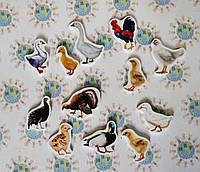 Домашние птицы. Магнитики развивающие. Набор