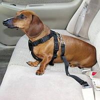 Поводок для животных в машину MirAks LH-3729 Black (Черный/нейлон/замок)