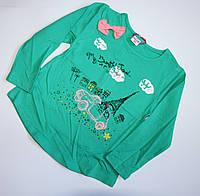 Зеленый реглан с принтом для девочек
