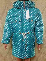 Утепленная детская курточка в горошек 51323