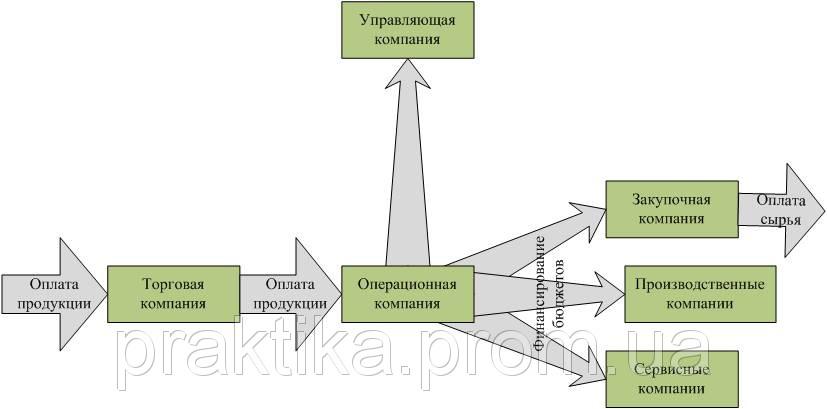 Выделение ключевых функций в специализированные компании. Схема с использованием операционной компании.