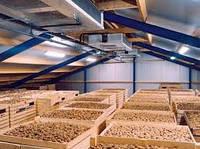 Овощехранилища, картофелехранилища