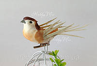 Птичка декоративная, фото 1