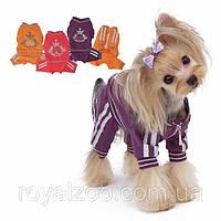 Спортивный костюм Puppy Angel PA-OR101 Luxury Paw для собак, фото 1