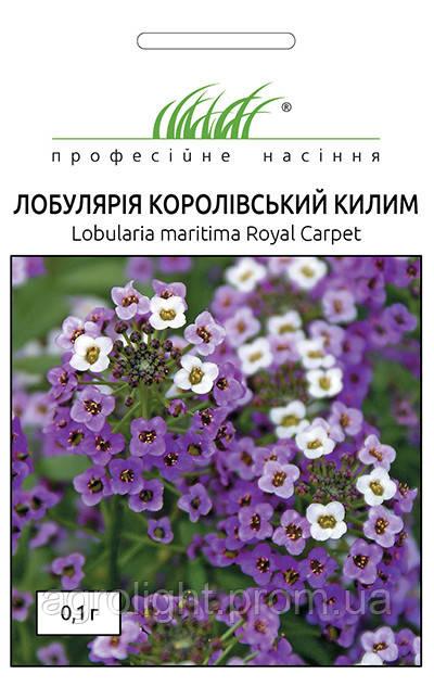 """Купить семена цветов Алиссум (Лобулярия) Королевский ковер, смесь 0.1 г  ТМ """" Нем Zaden """"(Голландия)"""