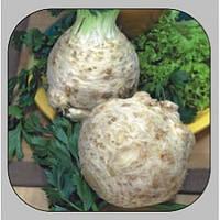 Корневой сельдерей Президент семена среднего сорта для кулинарии, употребления в свежем виде и хранения