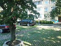 Укладка тротуарной плитки на ПАРКОВКАХ