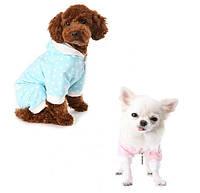 Спортивный костюм Puppy Angel PA-OR136 Starmania для собак, фото 1