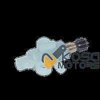 Маслонасос электропилы FORESTA; ДНИПРО-М 2826