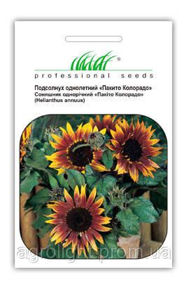 """Купить семена цветов Подсолнух Пакито Колорадо, смесь 1 г  ТМ """"Нем Zaden """"(Голландия)"""