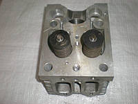 Головка блока цилиндра Д-144, Д-21 (Т-40, Т-25, Т-16) Д37М-1003008-Б5