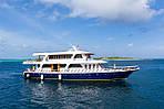 Страна: Мальдивы Яхта: Blue Shark Даты: Октябрь-Ноябрь 2017. Стоимость: 1500 USD за человека