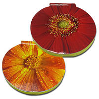 Стікери з клейкою смужкою типу Post-it розміром 62х62 мм, 50 аркушів «Квіти», фото 1