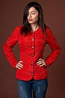 Женская курточка украшена рельефными швами