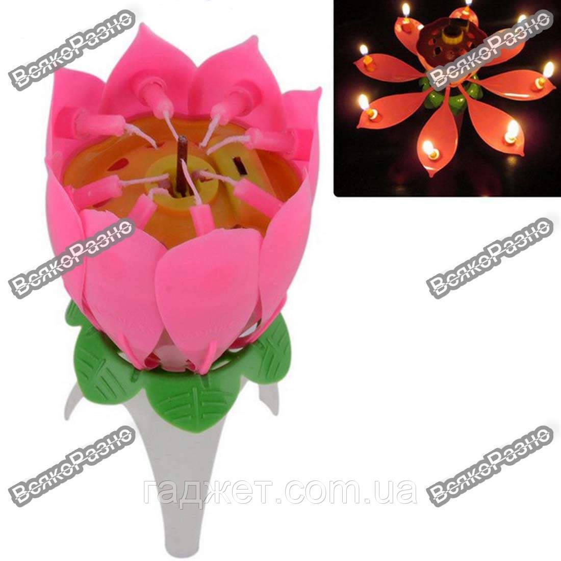 Раскрывающаяся музыкальная свеча для торта - Цветок / Музыкальная свеча Цветок Лотоса