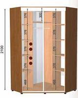 Угловой шкаф-купе (2 фасада) высота 2100,, фото 1