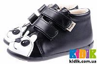 Демисезонные ботинки для мальчика Mrugala 5102-99