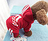 """Комбинезон, толстовка """"Aдидог"""" для собак.  Одежда для собак Adidog, фото 4"""