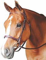 Уздечка, Training, для лошади