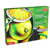 """Набор, техника масляная пастель по контурам """"Лимоны"""", ROSA Talent, 000083"""