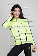 Женский спортивный костюм Адидас с лосинами