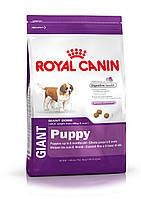 Royal Canin Giant Puppy для щенков гигантских пород до 8 месяцев