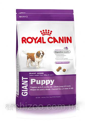 Royal Canin Giant Puppy 17 кг для щенков гигантских пород до 8 месяцев, фото 2