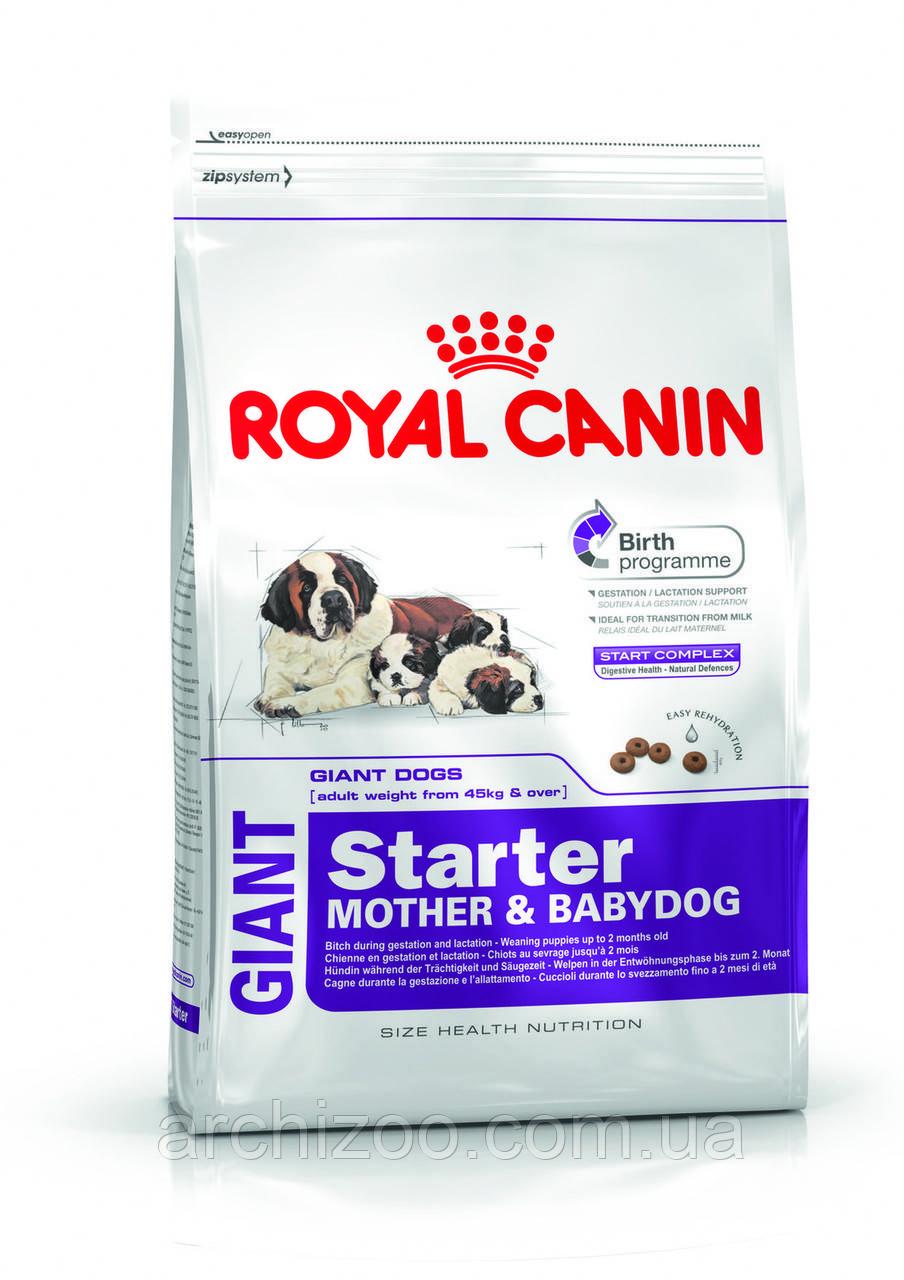 Royal Canin Giant Starter 18 кг для щенков до 2 месяцев, беременных и кормящих сук