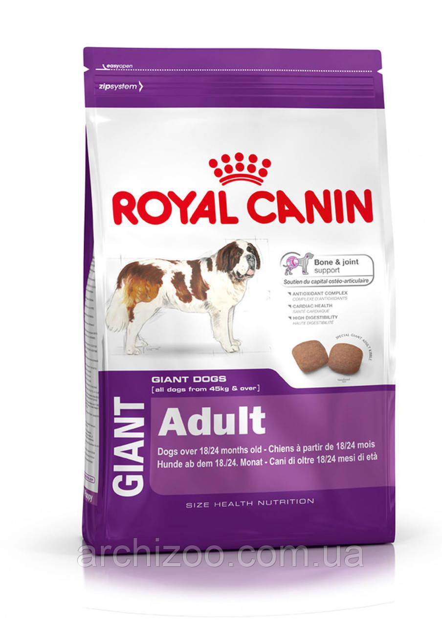 Royal Canin Giant Adult 20 кг для взрослых собак гигантских пород