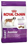 Royal Canin Giant Junior 17 кг для цуценят гігантських порід старше 8 місяців