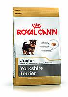 Royal Canin Yorkshire Terrier Junior для щенков породы Йоркширский терьер до 10 месяцев