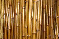 Бамбуковый ствол для сада и огорода длина 1м диаметр до 3 см