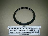 Кольцо уплотн. втулки башмака (РОСТАР), 6520-2918180