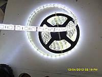 Светодиодная лента SMD 5050 RGB (60 LED/m)  IP68