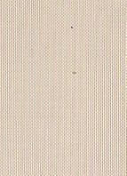 Тканевые ролеты. 40*240 см. Скрин 2001 Бежевый (Любой размер под заказ)