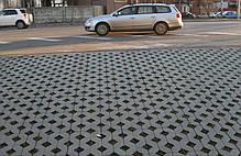 """Тротуарная плитка """"Решетка"""", фото 3"""