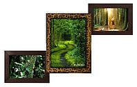 Мультирамка на 3 фото Лесенка в цвете Золотой Шоколад
