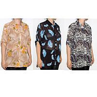 Блуза для женщин р. S-Xl   арт. 821