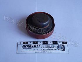 Пробка бачка электрофакельного подогревателя Д-240-245, кат. № 240-3707200