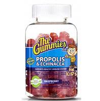 The Gummies Co Kids Propolis & Echinacea, 100 желеек